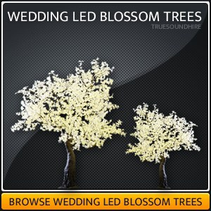 Wedding LED Blossom Tree HIre Packages